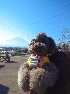富士山とkokoro