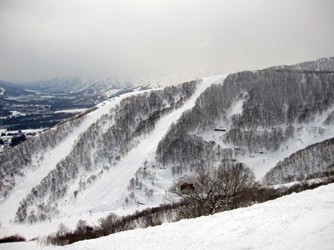 ジャイアントより稗田山コース全景