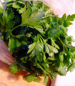 italian+parsley_convert_20110331112012.jpg