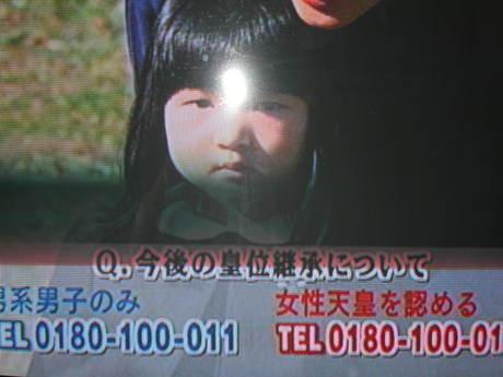 9185.jpg
