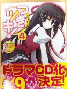 tsuki4_dcd.jpg