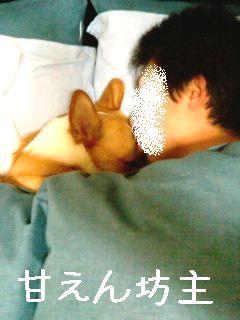 画像-0001