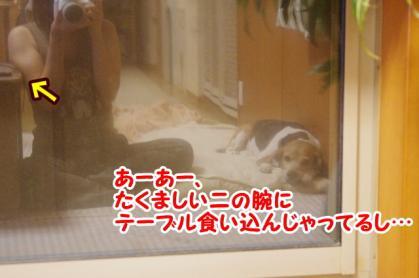 のりじ家 2