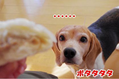 肉まん 2