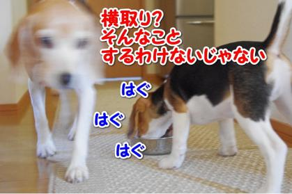 旬待ち 4
