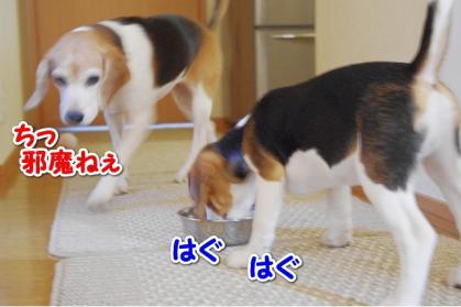 旬待ち 3