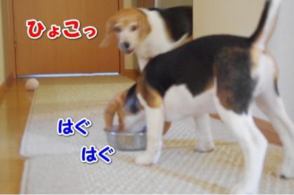 旬待ち 2