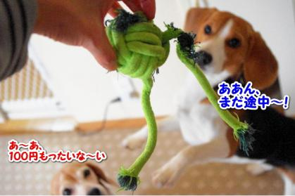 おもちゃ 4