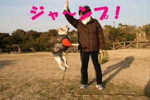 驚異のジャンプ力!