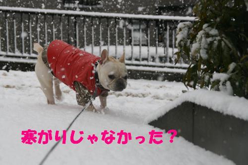 脱!寒がり!