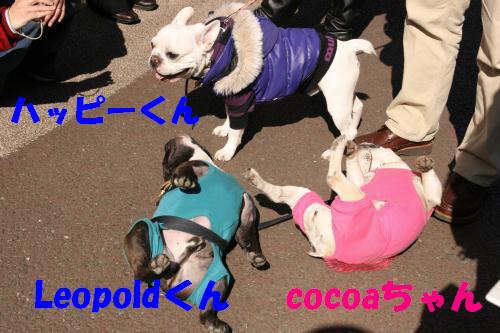 レオポルドくん&ココちゃん