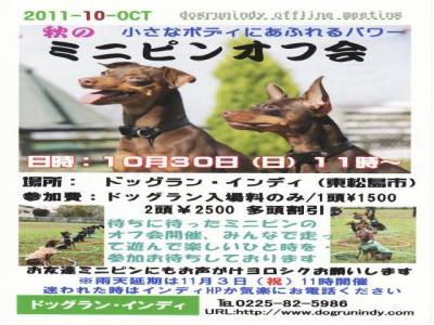 111030_minipin-event05_convert_20111024183145.jpg