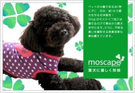 mos2012_ma.jpg