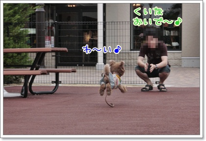 10_20110617132236.jpg