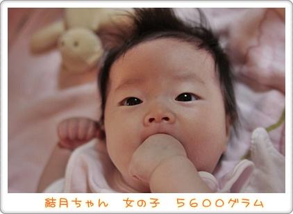 1_20111008100616.jpg