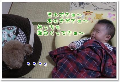 1_20111104223624.jpg