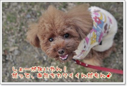 1_20111112215505.jpg