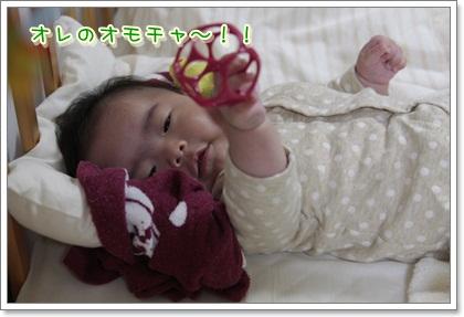 1_20111114124337.jpg