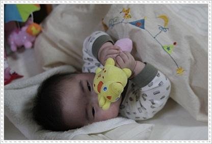 1_20111128200724.jpg
