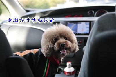 1_20111211145704.jpg