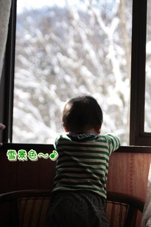 1_20120322122258.jpg