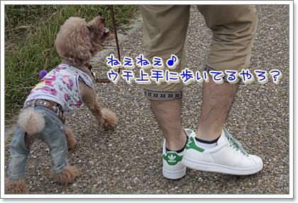 2_20111103120945.jpg