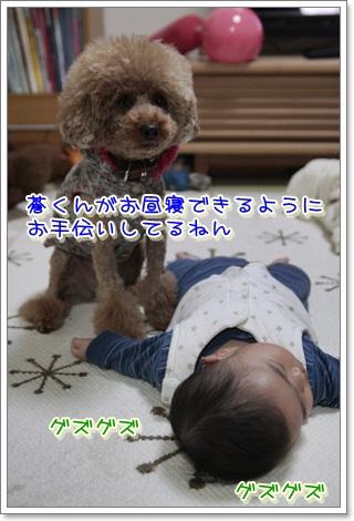2_20111121150914.jpg