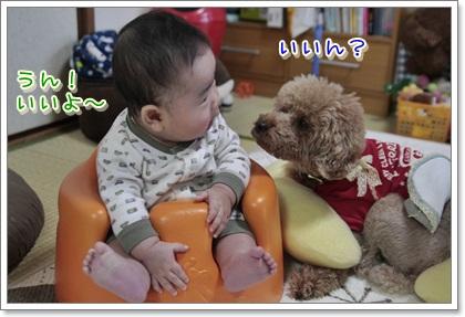 2_20111126202307.jpg