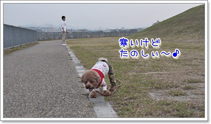 2_20111204102726.jpg