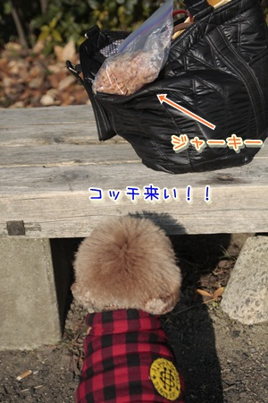 2_20120108003730.jpg