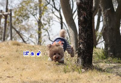 2_20120330125346.jpg