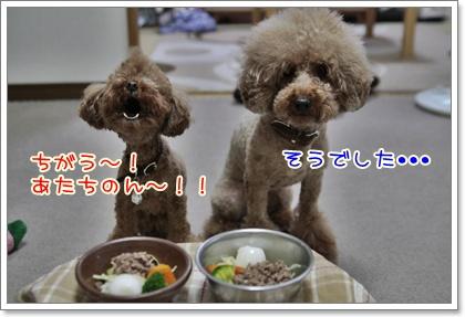 3_20110606225411.jpg