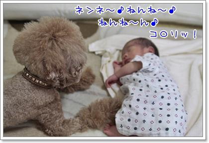 3_20110730133011.jpg