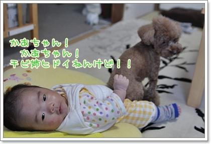 3_20111013213239.jpg