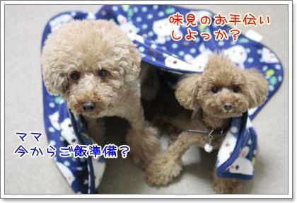 3_20111030123909.jpg