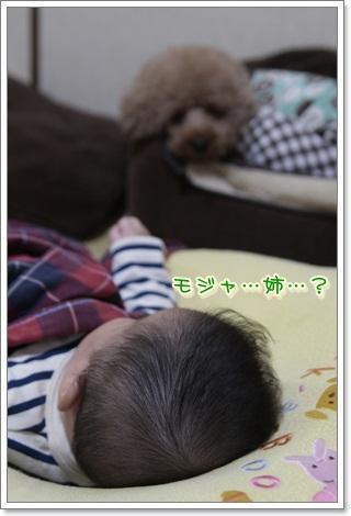3_20111104223623.jpg