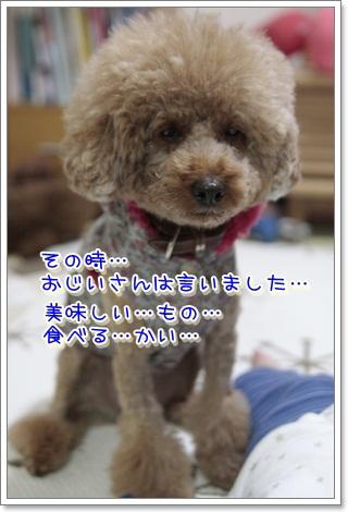 3_20111121150914.jpg