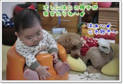 3_20111126202307.jpg