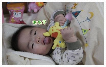 3_20111128200723.jpg
