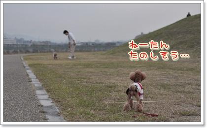 3_20111204102726.jpg