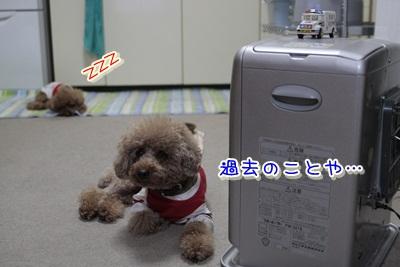 3_20111228151752.jpg