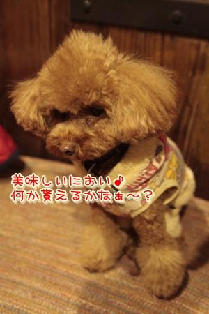 3_20111231210531.jpg