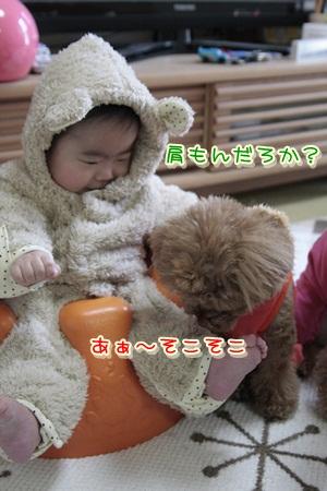3_20120129105603.jpg