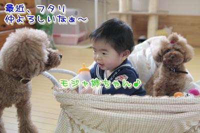 3_20120326155134.jpg