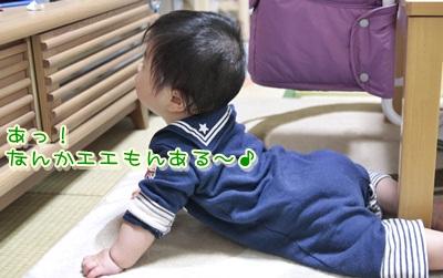 3_20120416145809.jpg