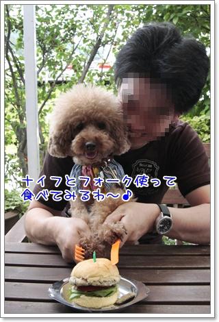 4_20110617130809.jpg