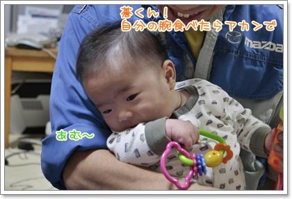 4_20111020145805.jpg