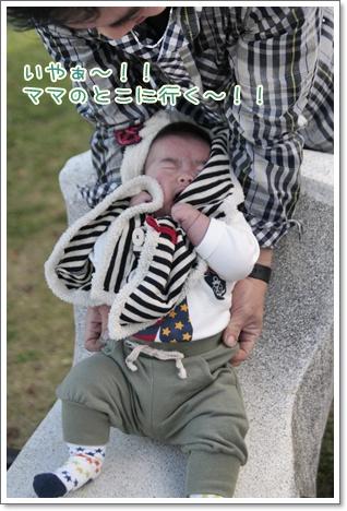 4_20111111100628.jpg
