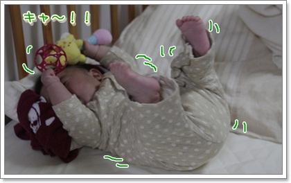 4_20111114124336.jpg