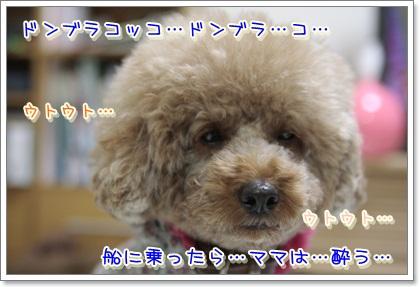 4_20111121150914.jpg